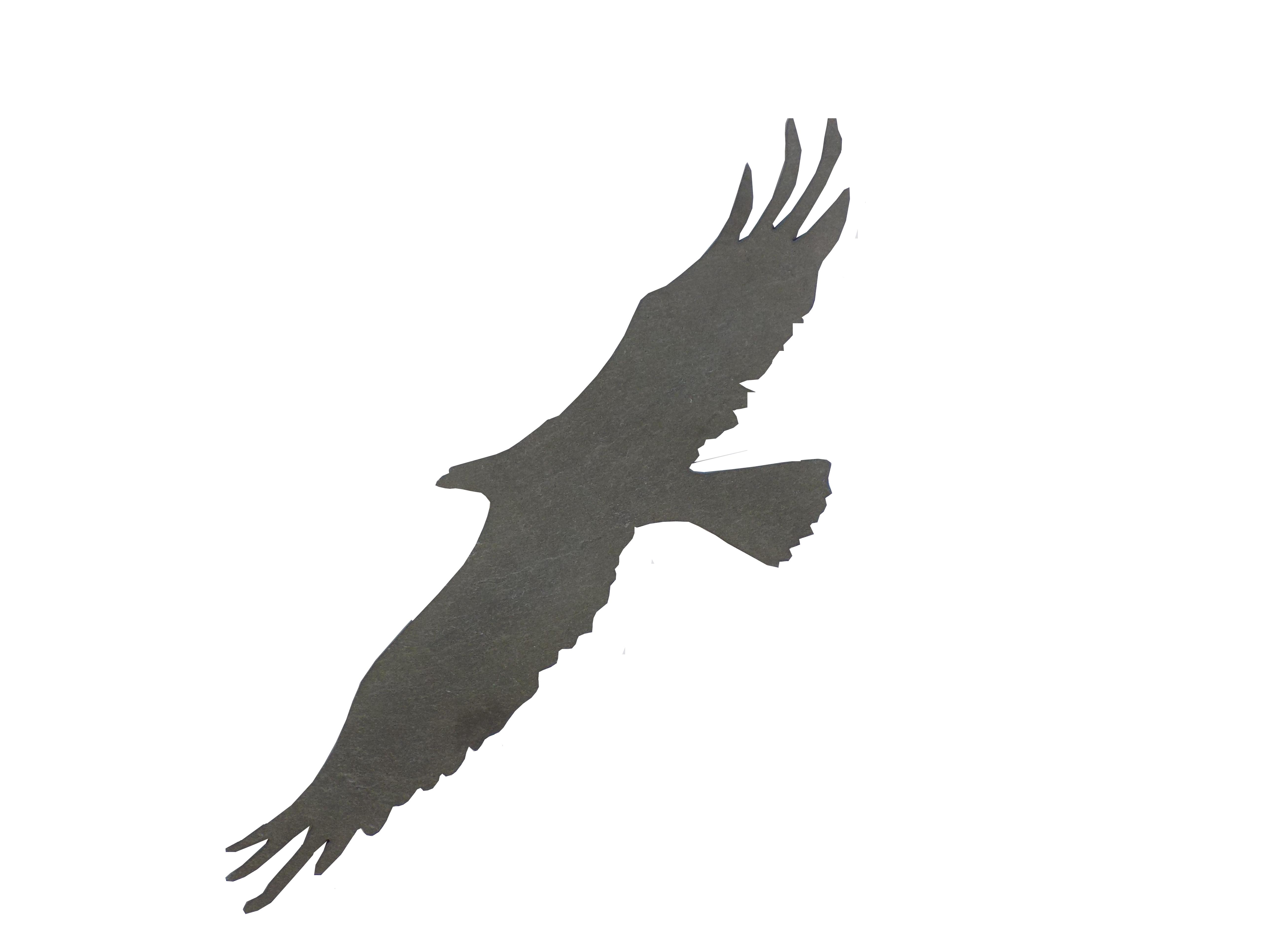Primero Adler fliegend ca.32x11cm