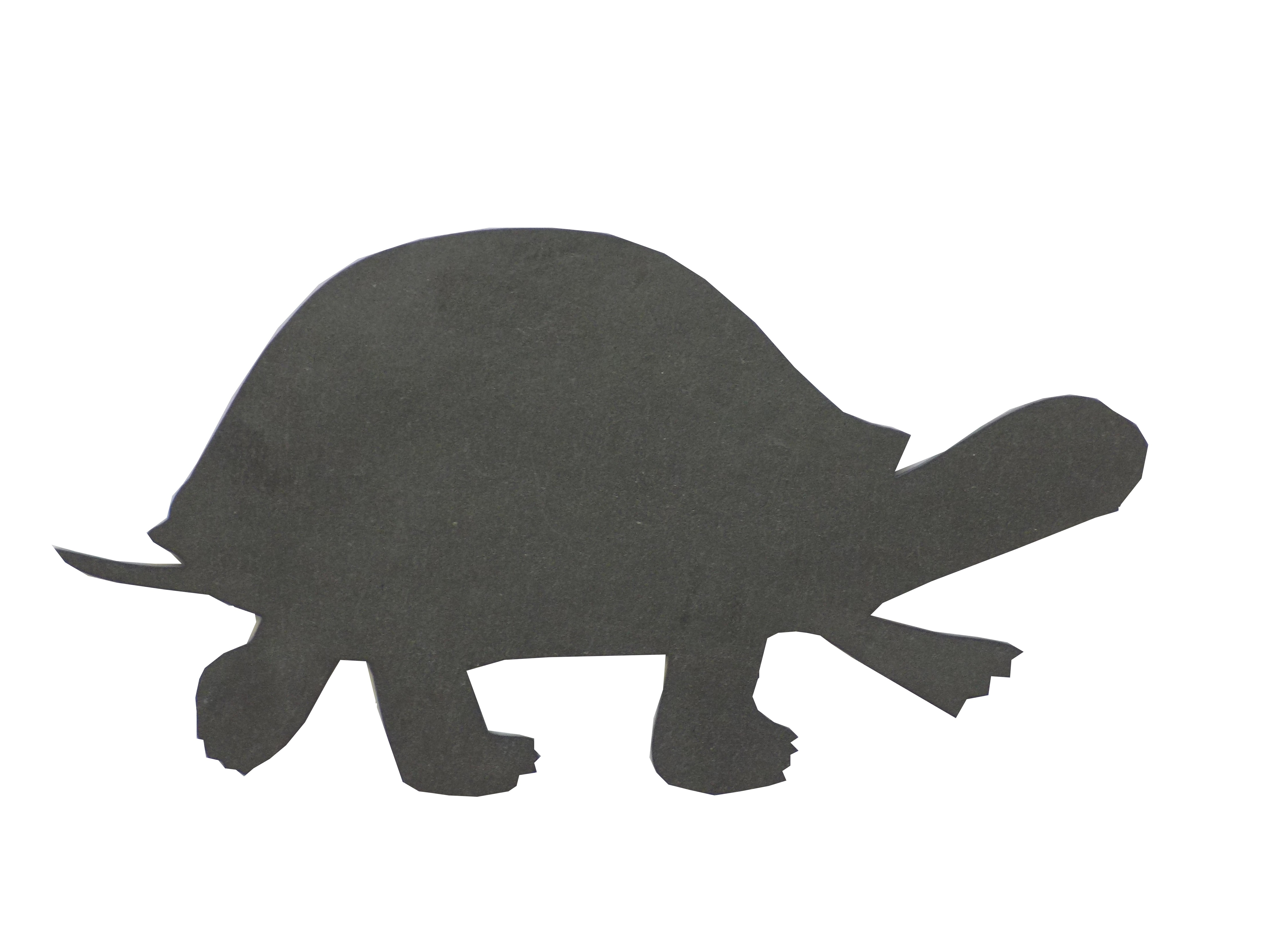 Primero Schildkröte ca.25x13cm